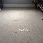 Cranberry Juice Stain Removal Miami A