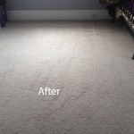 Cranberry Juice Stain Removal Miami B
