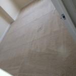 Miami-Carpet-Clean-room