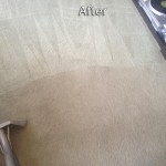 Miami-Carpet-Cleaning-Company