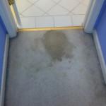 Miami-Vomit-1-before-carpet