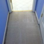 Miami-Vomit-2-after-carpet
