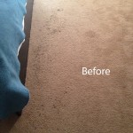 ink stain removal Miami-A